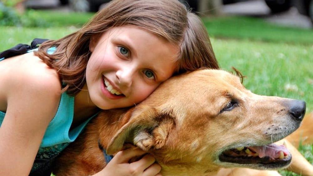 Follow Your Pet, l'evento dedicato agli amici a quattro zampe alla … – FirenzeToday