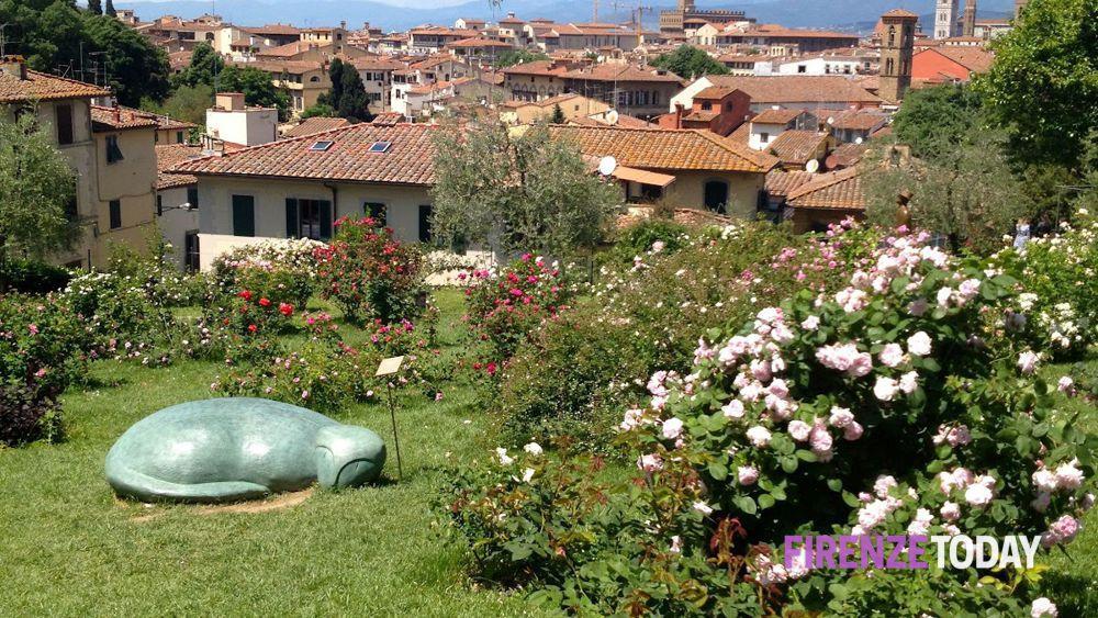 Dieci giardini di firenze e dintorni da vistare in primavera for Rose da giardino